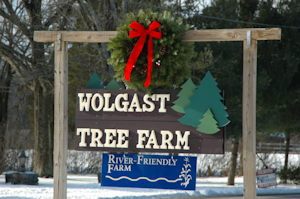 Wolgast Tree Farm in Somerset, New Jersey - Christmas Trees & Local Honey