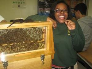 A student at Barack Obama Green Charter High School checks out the observation hive while she samples some honey during a school program offered by Wolgast Tree Farm & Apiary.